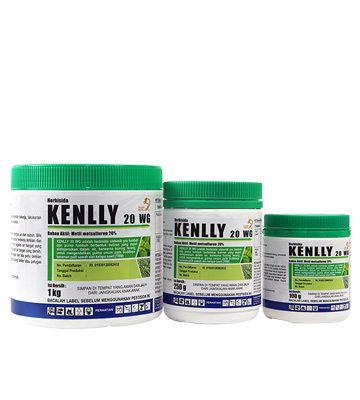 product_kenlly